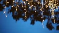 Decorative string lights hanging on the tree. Abstract blurred background.