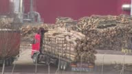 Deforestation is spreading at an alarming rate in SouthEastern Europe a region hosting vast oldgrowth forests and home to thousands of bears wolves...
