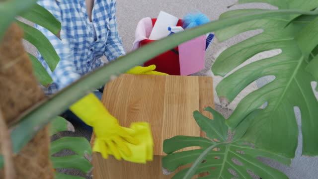 Delightful woman spraying small coffee table