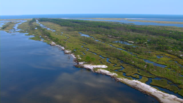 Dense trees and grassy marshes line the coast of Cat Island in Mississippi.