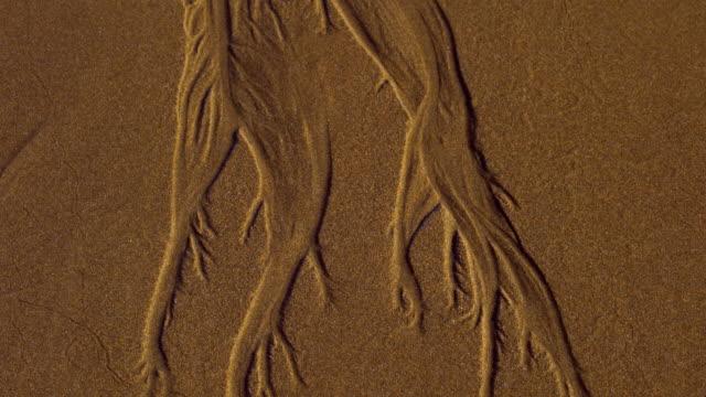 Designes on the sand, San Julian beach, Liendo, Cantabrian sea, Montaña Oriental Costera, Cantabria, Spain, Europe