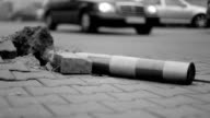 Destroy pole on road, black and white