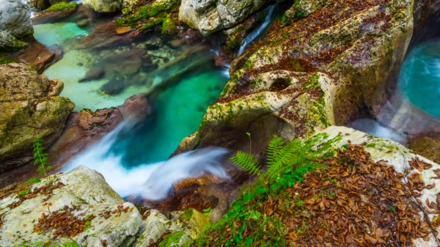 Detail of river in Triglav National Park