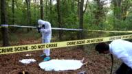 Detective arrived after forensics