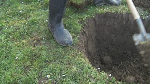 HD: Digging