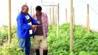 Digital tablet African Organic Farmers