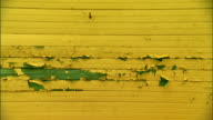 MS Dilapidated wall of house w/ yellow peeling paint undercoating showing green from ripped yellow coat Old broken poor wear tear worn