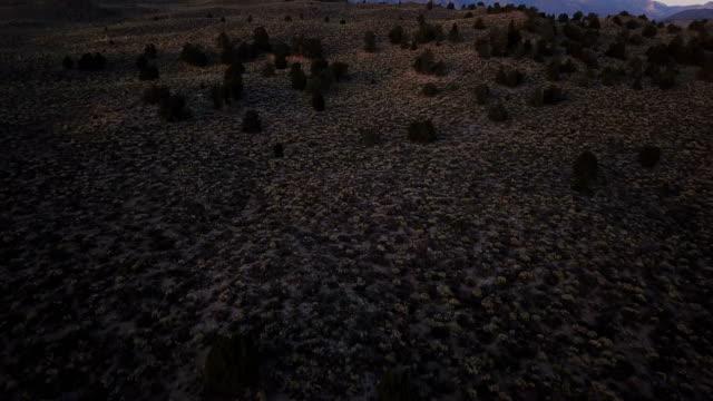 Dim licht voor zonsopgang in Californië wildernis