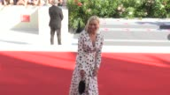 Director Andrew Haig Chloe Sevigny Charlie Plummer and more on the red carpet for the Premiere of Lean on Pete at the Venice Film Festival 2017...