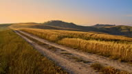 DS Dirt road among Tuscan hilly fields of wheat
