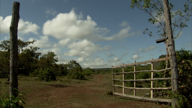 A dirt road leads beyond an open fence gate near Pedra Pintada Cave in Brazil. Available in HD.