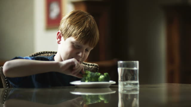 MS Displaced boy (10-11) sitting at table, looking at broccoli on plate, American Fork, Utah, USA