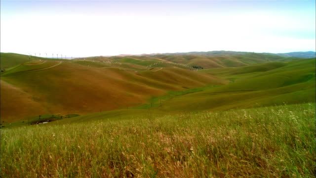 WS Distant wind turbines spinning on hillside in valley / Livermore, California, USA