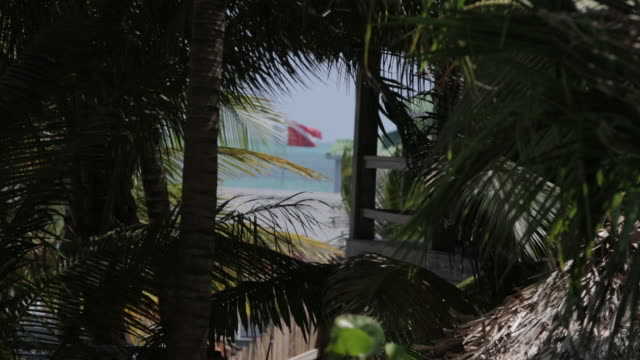 Divers flag off the coast of Belize