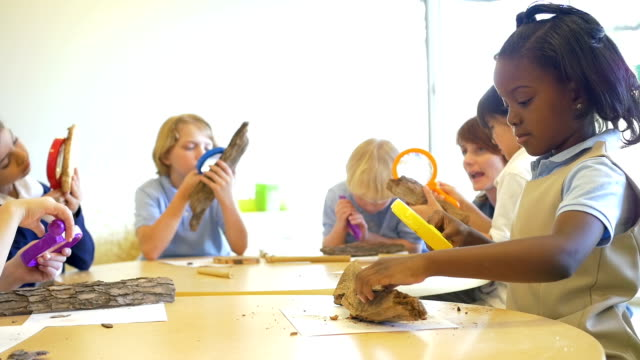 Diverse group of private school children studying nature with magnifying glasses in science class