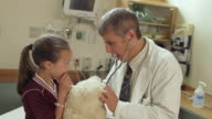 WS ZI CU Doctor giving large teddy bear to girl (8-9) in hospital room / Portland, Maine, USA