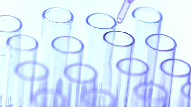 doctor or scientist testing in Chemistry