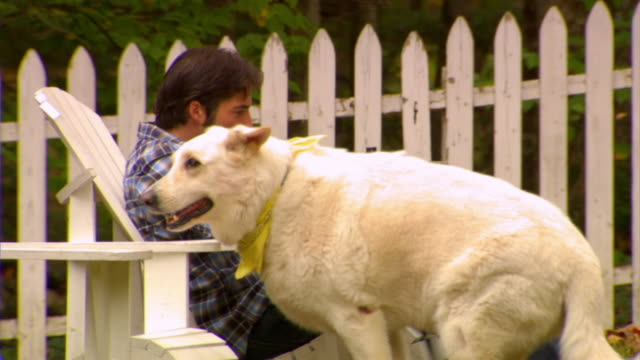 MS, Dog assisting man using laptop in country house garden, Phoenicia, New York, USA