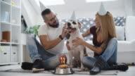 4 K: Hund Geburtstag Party.