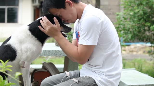 dog hand shake
