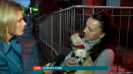 Dog owner held to ransom over dog theft ENGLAND London Queen's Park EXT Reporter LIVE to camera Nicola Shepherd LIVE interview SOT