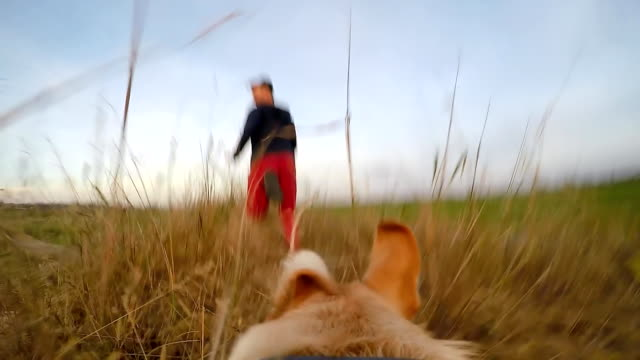 SLO MO POV Dog Running After His Owner