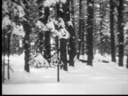 1927 B/W WS MS PAN MONTAGE Dogsled and group of lumberjacks walking through snow in forest, Ontario, Canada