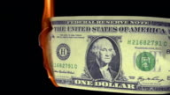 1 US Dollar Banknote Burning against Black Background, Real Time