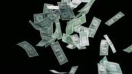 SLO MO Dollarscheine herunterfallen auf schwarzem Hintergrund