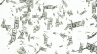 4K Dollar Bills Falling On White Background | Loopable