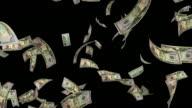 $50 Dollar Bills #2 HD