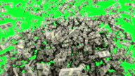 HD : Dollar money falling with Green Screen.