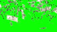 Dollar Rechnungen fallen chroma key