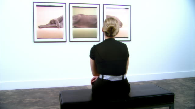 Dolly behind woman looking at three-panel print of a Weimaraner by William Wegman in art gallery