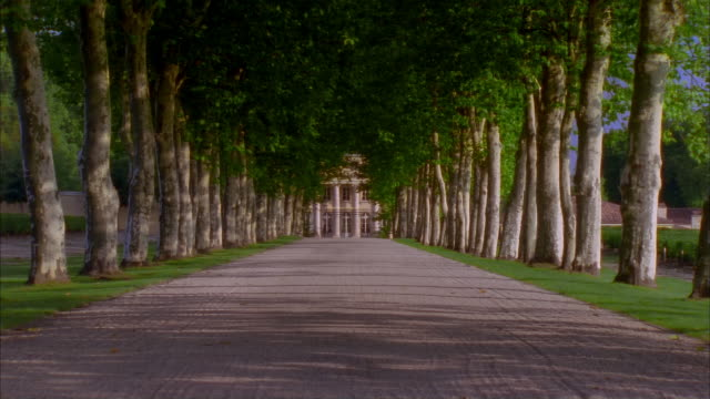 Dolly down tree-lined driveway leading up to gate of Chateau Margaux / Margaux, Medoc, France
