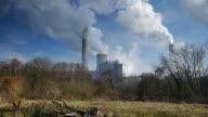 Dolly: Environmental Damage