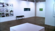 Dolly inside exhibition of contemporary art in gallery / zoom in to panels of lily pads on wall