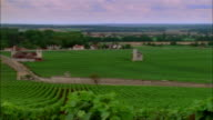 Dolly right across vineyards to chateau at Clos de Vougeot / Burgandy, France