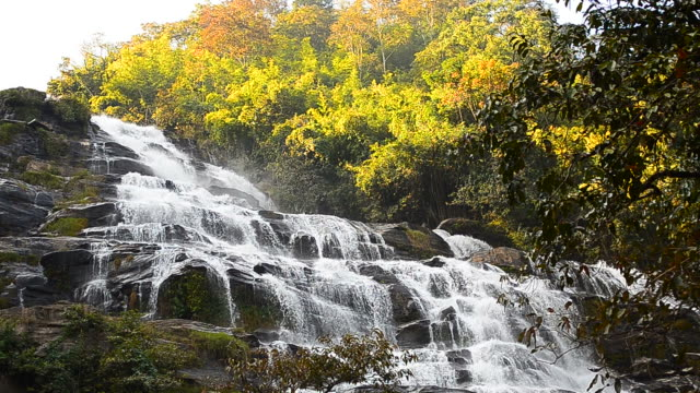 Dolly Shot: Cascade Waterfalls in Tropical Rainforests