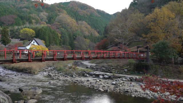 Dolly shot: korankei Forest park with Autumn Red Leave Nagoya Japan
