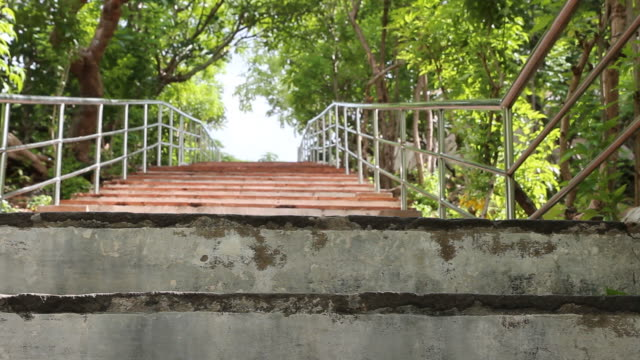 Dolly-Schuss-Treppe