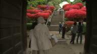 Dolly shots of the temple precincts   Azalea   Group  shot
