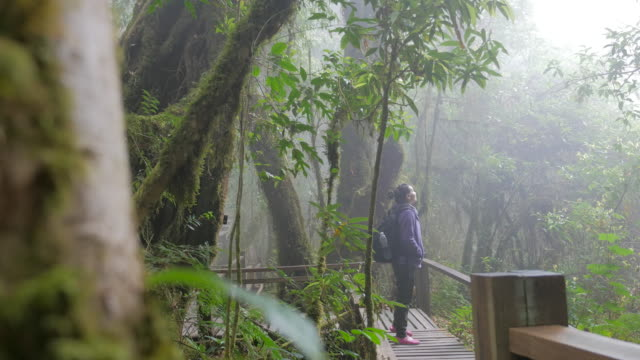Dolly Shot:Two Young woman lost in rainforest jungle