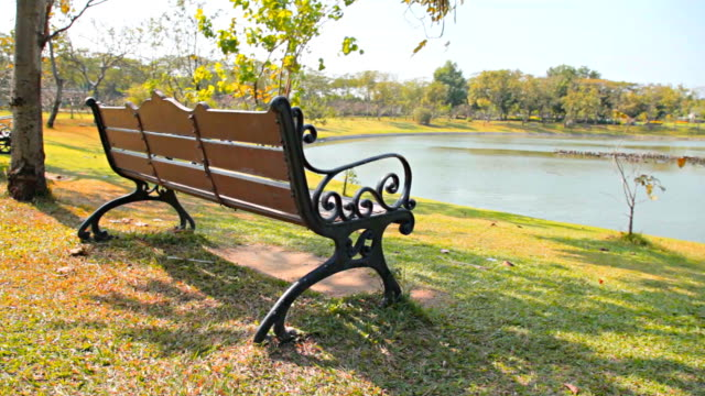Dolly:Bench on a lawn in the park.