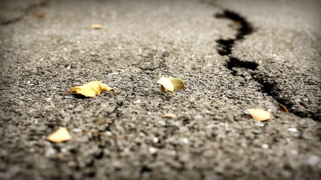 HD Dolly:Road cracks, Broken Asphalt.