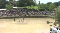 Doronko Matsuri / Japanese Mud Festival
