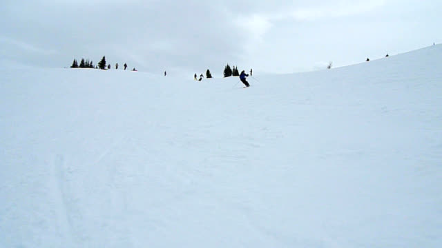 HD: Downhill Skier