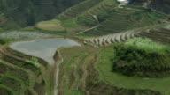 LS WS ZO Dragon's Backbone Rice Terraces with Longji Mountain, farmer working in rice paddy / Longsheng, Guangxi, China