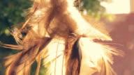 Indianischer Traumfänger in der Sonne, Sommer
