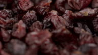 Dried Blueberries - 4K video